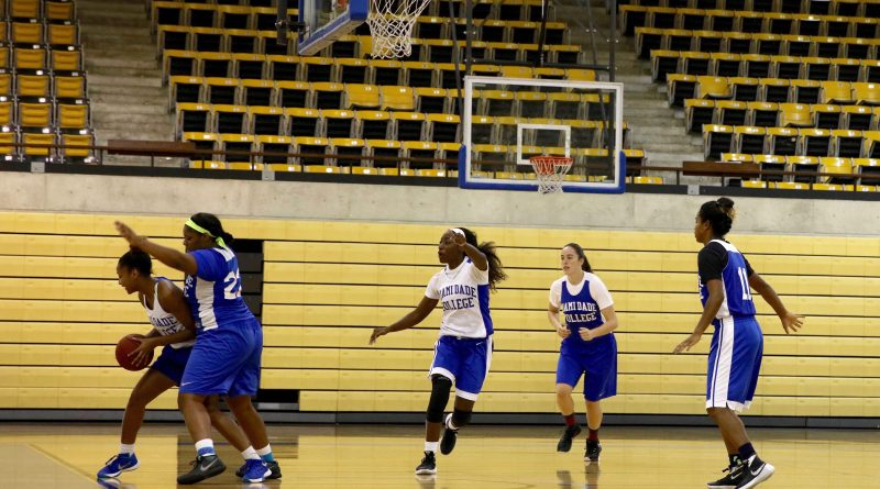 Lady Sharks on the court.