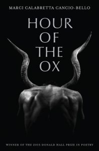 Book cover for Hour of the Ox.