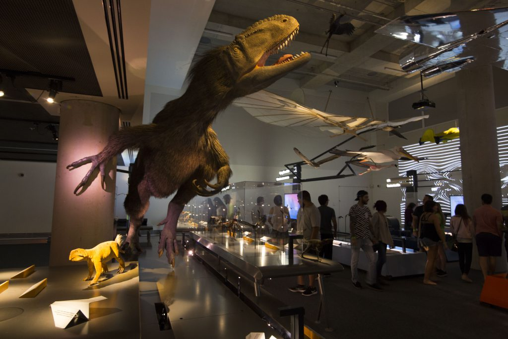 Dinosaur on display.