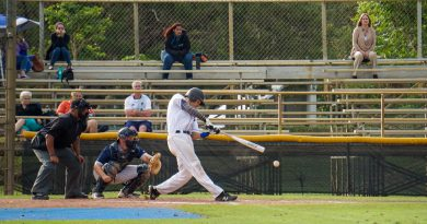 Photo taken during a baseball game.