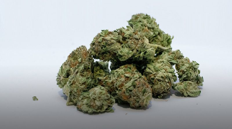 Image of marijuana.
