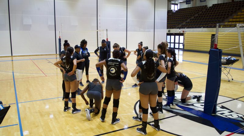 Lady Sharks volleyball team during practice.