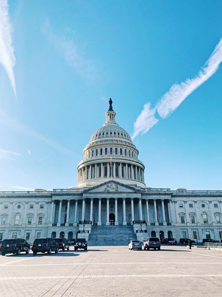 Image of the United States Capitol Building.