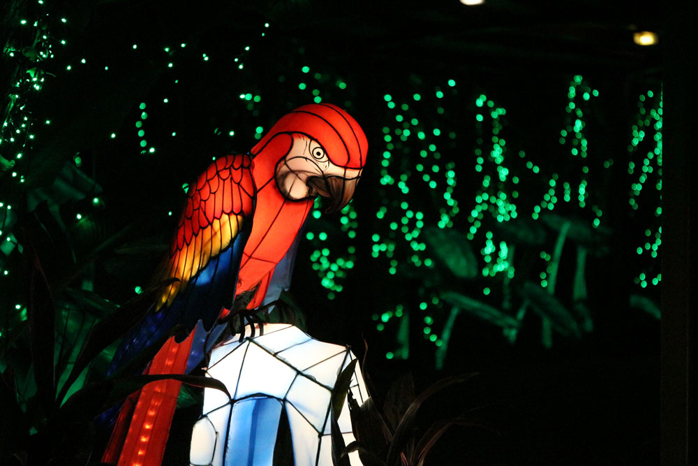 A lighted up parrot lantern.