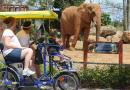 Zoo Miami.