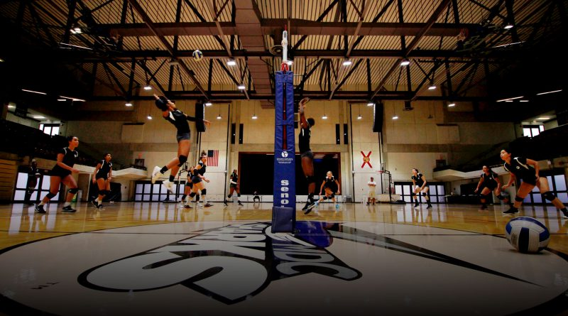 Volleyball team on court.