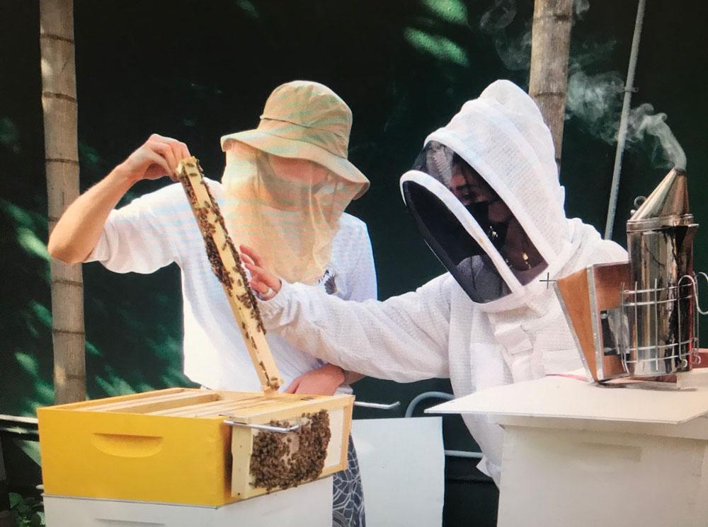 Hialeah Bee Project
